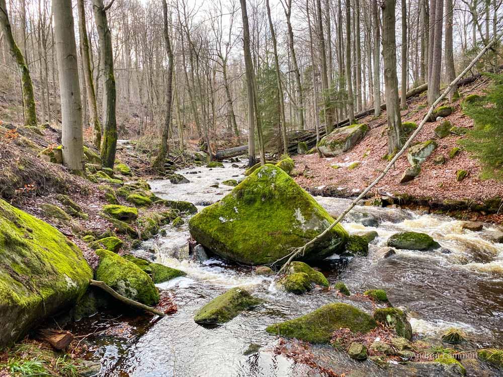 Wandern im Harz: Durchs wilde Ilsetal I www.indigo-blau.de