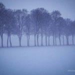 Winterspaziergang durchs Calenberger Land