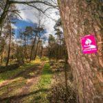 Wandern in NRW: Auf zum Hohe-Mark-Steig