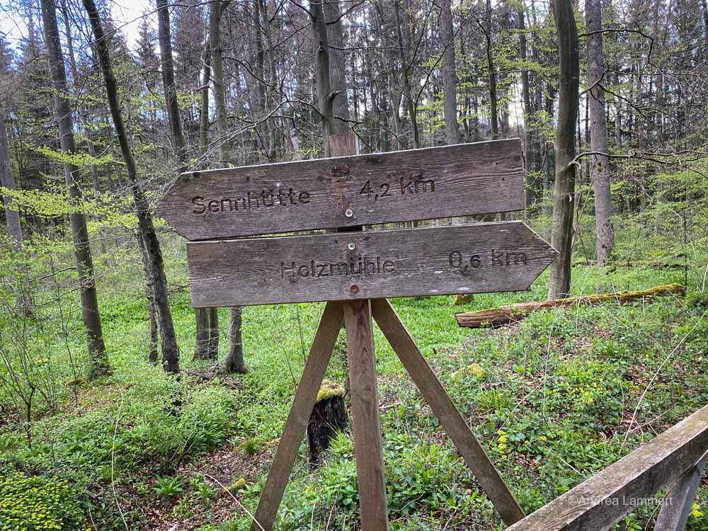 Hannover, Deister, Wandern, Osterwald, Calenberger Land