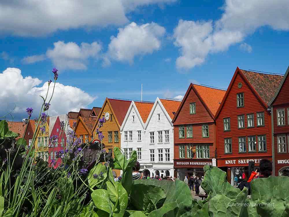Bergen, Ausflug Tysnes.